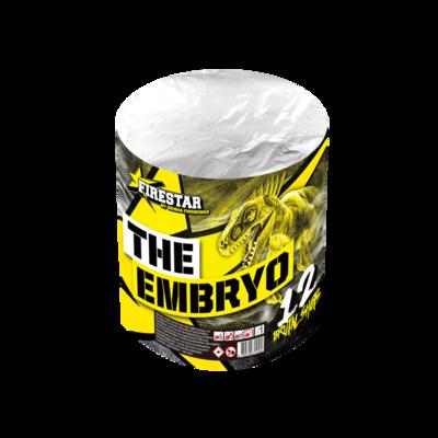 1410 THE EMBRYO