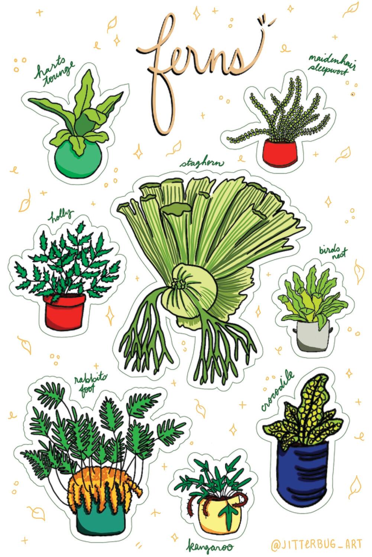 Fern Sticker Sheet