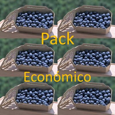 Pack Económico (6 Caixas Mirtilos)