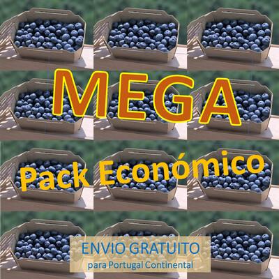 Mega Pack Económico (12 Caixas Mirtilos)