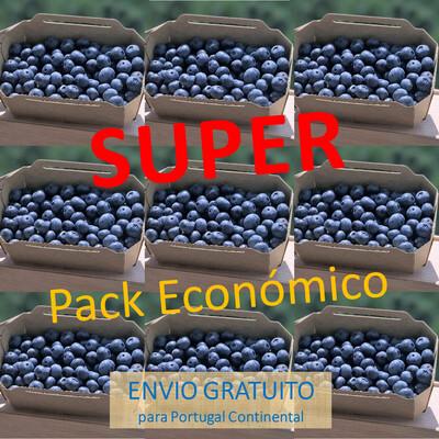 Super Pack Económico (9 Caixas Mirtilos)
