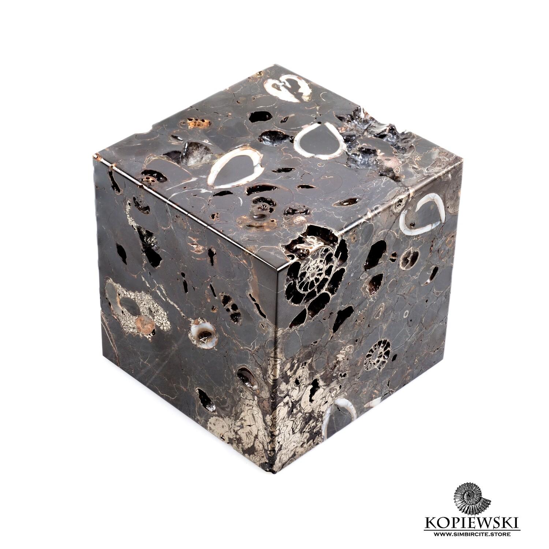 Куб Танатоценоз
