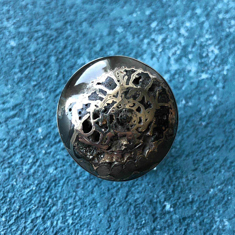 Ring witn Ammonite (Dimensionless)