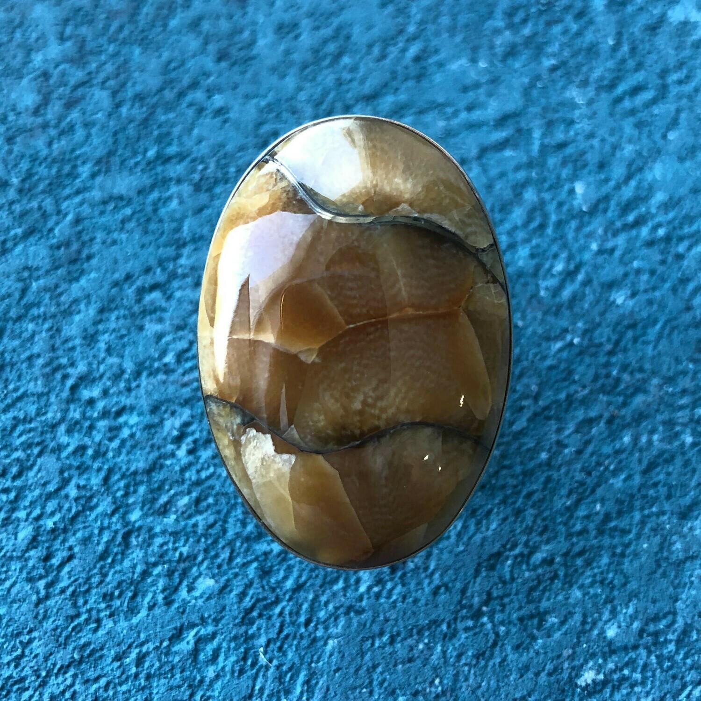 Ring Ammonine simbircite (Dimensionless)
