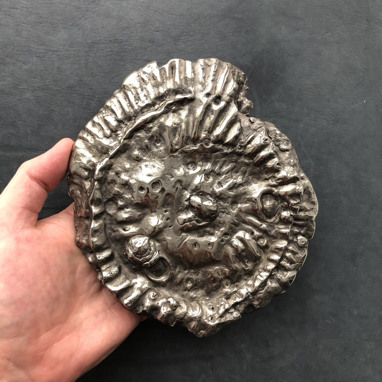 Pyrite Ammonite Speetoniceras Versicolor