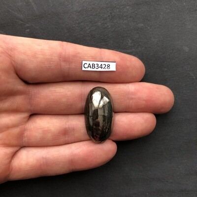 Pytite Cabochon (Pyrite from Ammonite)