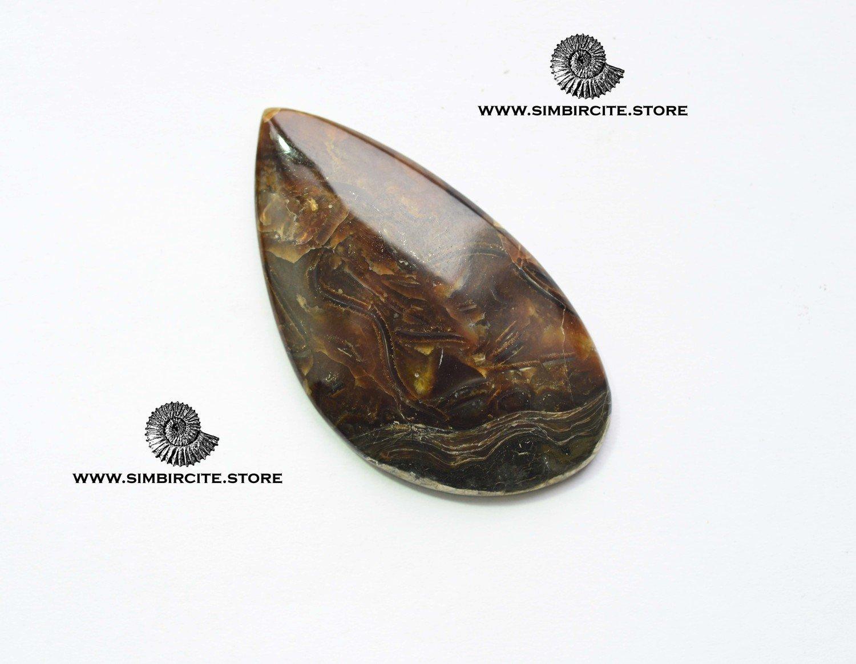 Аммонитовый симбирцит 58*32*4 мм