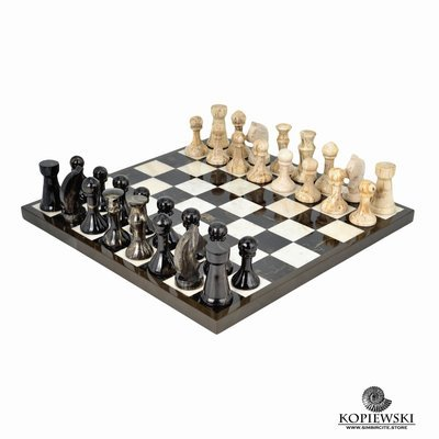 Chess made of two types of petrified wood.