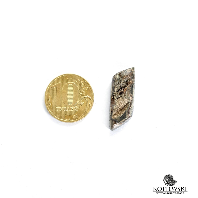 Аммонитовая жеода 25*10*5 мм
