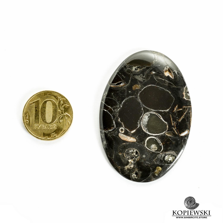 Кабошон танатоценоз 55*35*3 мм