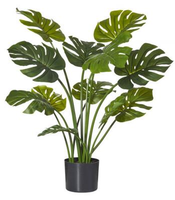 MONSTERIA PLANT-GARDEN 90CM