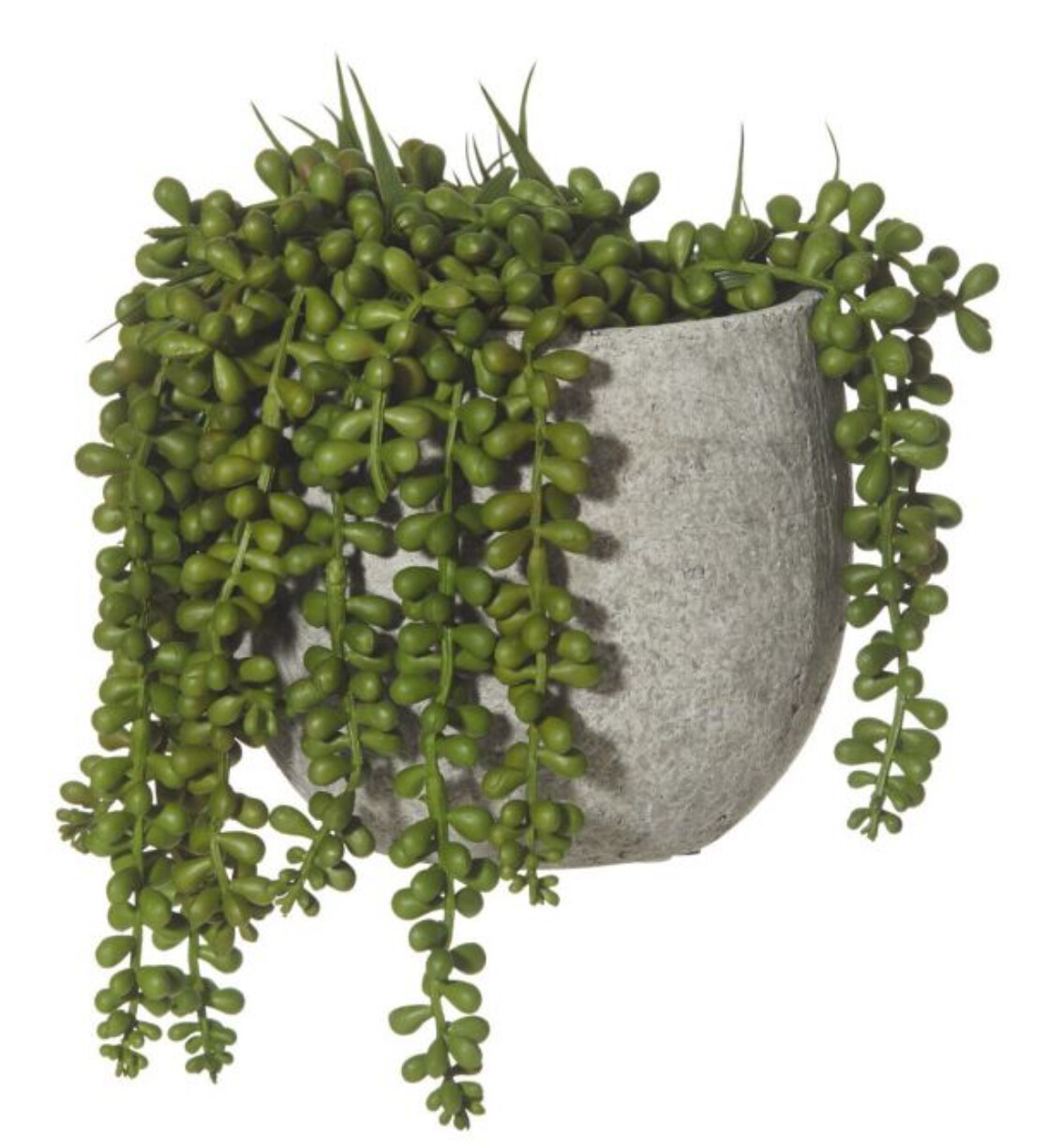HANGING PEARLS IN CONCRETE POT