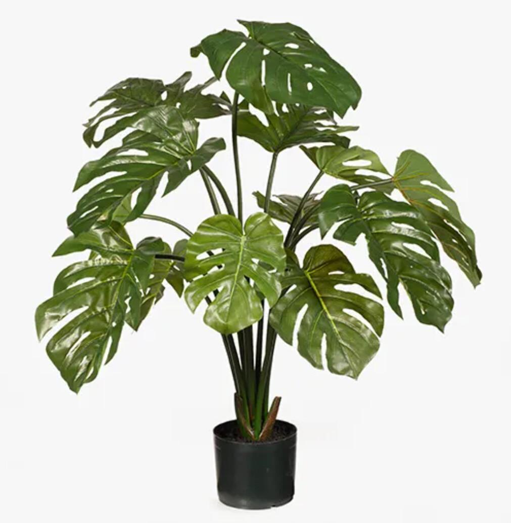 MONSTERA PLANT 94CM