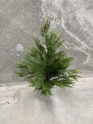 PINE FAUX TREE 50CM