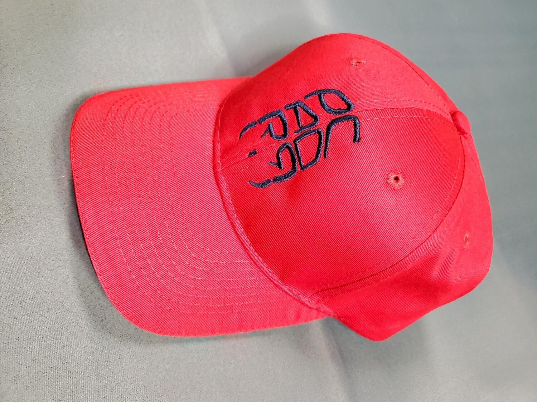 BILL CAP / HAT