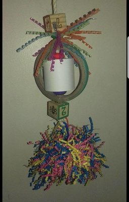 Homemade Parrot Toy