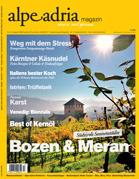 Heft Nr. 17 2013
