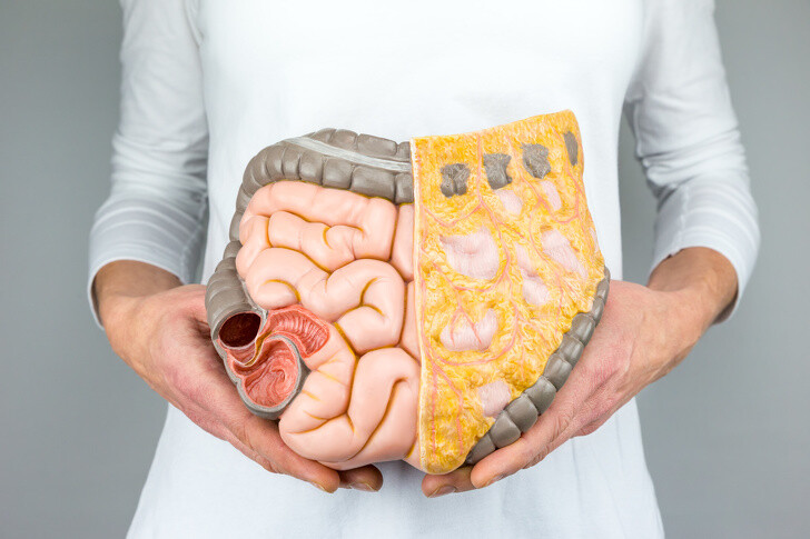Gut Health and Food Allergies What You Need to Know - Online Class