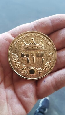 HALF SHEKEL KING DAVID COIN - gold plated