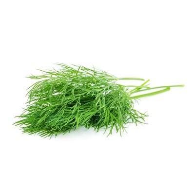 Herbs, Dill (2 Oz.)