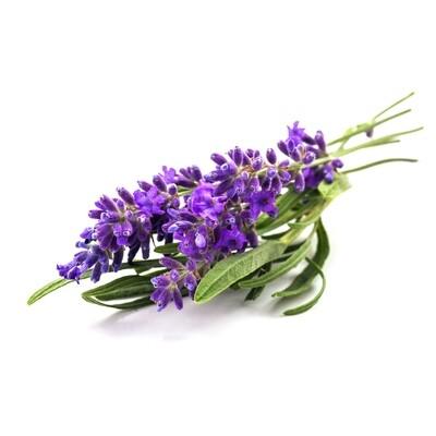 Herbs, Lavender (0.67 Oz.)