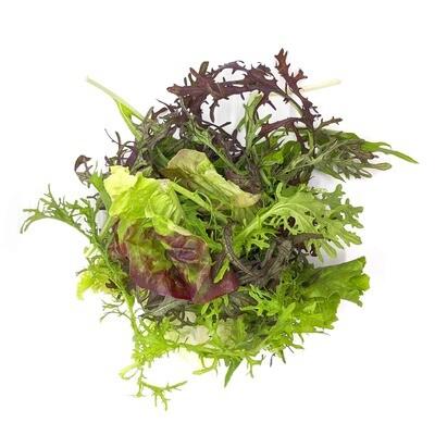 Salad Mix, Organic (7 Oz.)