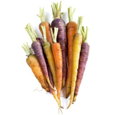 Carrot, Multi-Colored - Organic (1 Lb.)