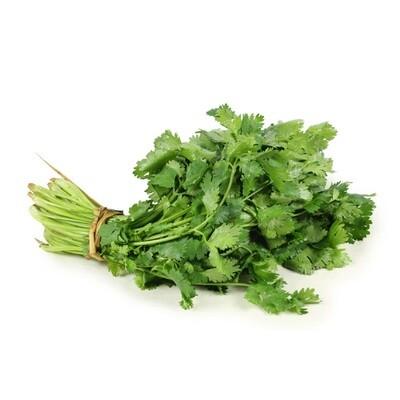 Herbs, Cilantro (2 Oz.)