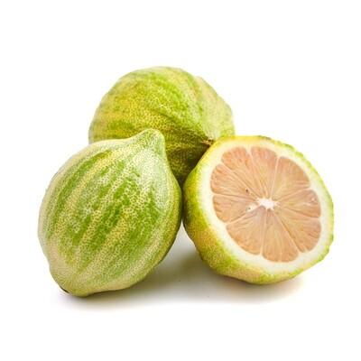 Lemon, Pink Eureka (1 lb.)