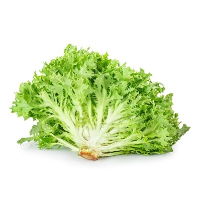 Lettuce, Hydroponic - Green Frisee (8 Oz.)