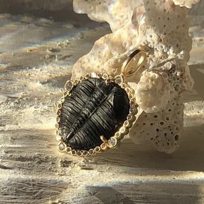 Trilobite with Diamond Pendant