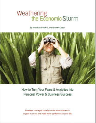 Weathering the Economic Storm - ebook
