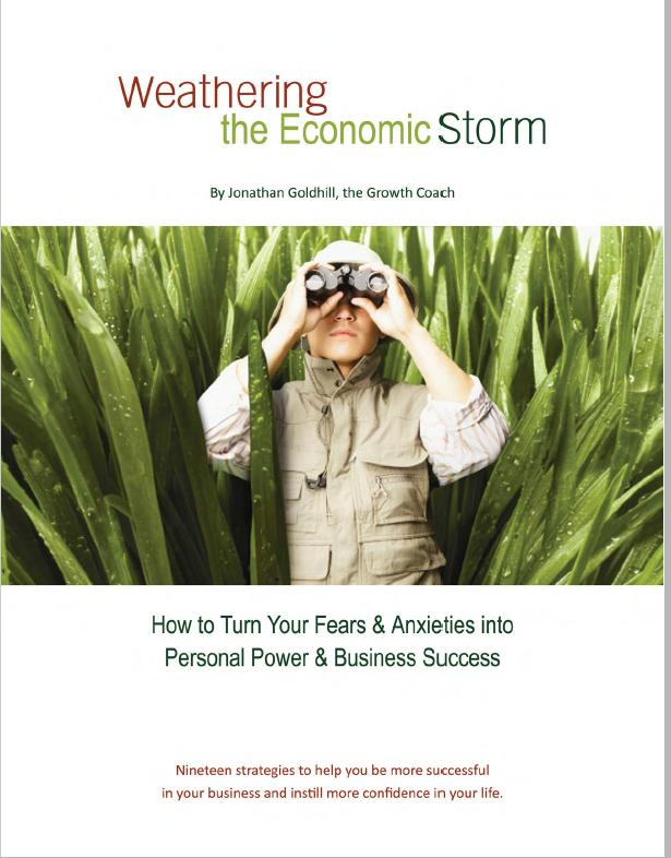 Weathering the Economic Storm - ebook