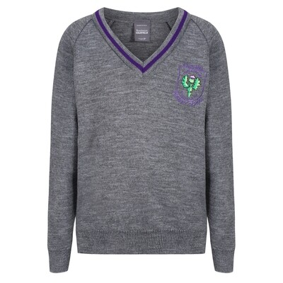 Aileymill Primary Knitted V-neck with stripe