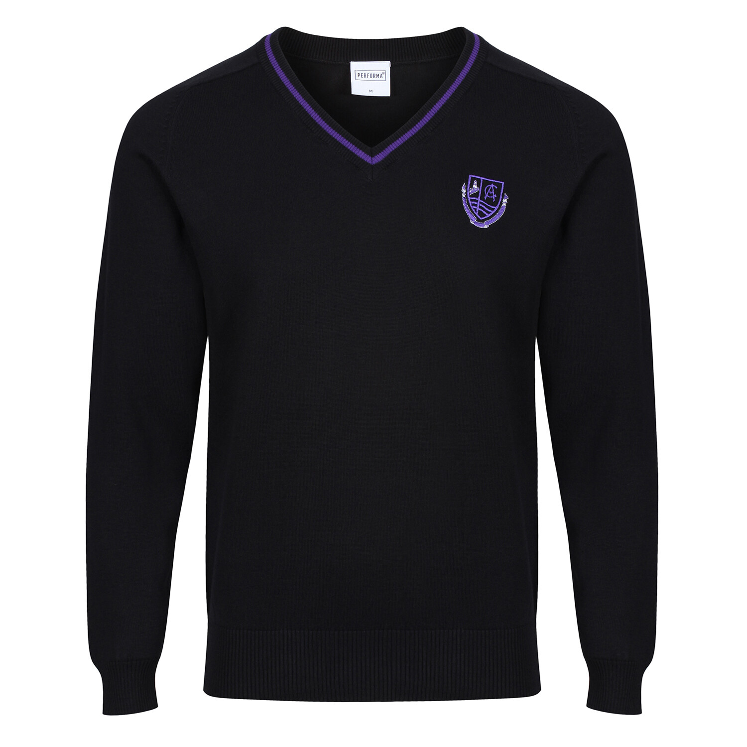 Clydeview Academy Knitted V-neck with stripe