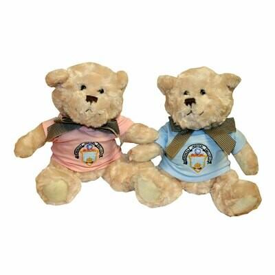 Morton Teddy Bear (choice of colour)