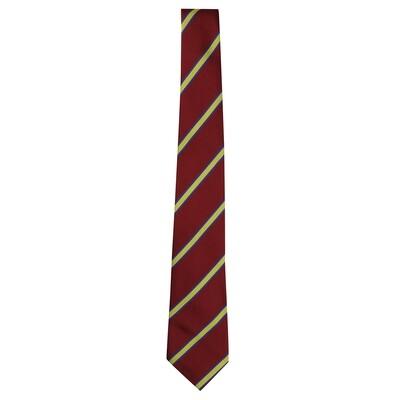 Ardgowan Primary School tie