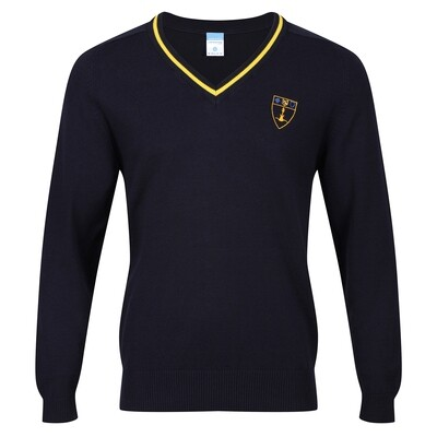 Inverclyde Academy Knitted V-neck with stripe