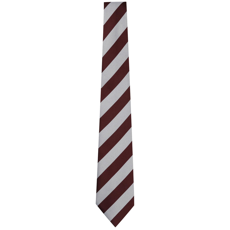 Lady Alice Primary School tie