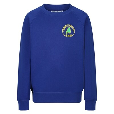 Cumbrae Primary Sweatshirt (Crew Neck)