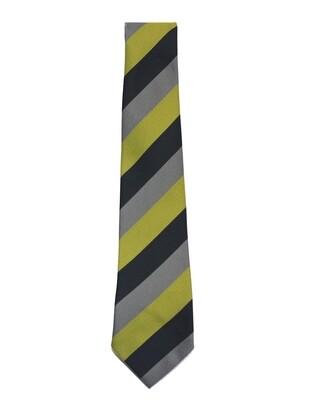 Dunoon Primary School tie