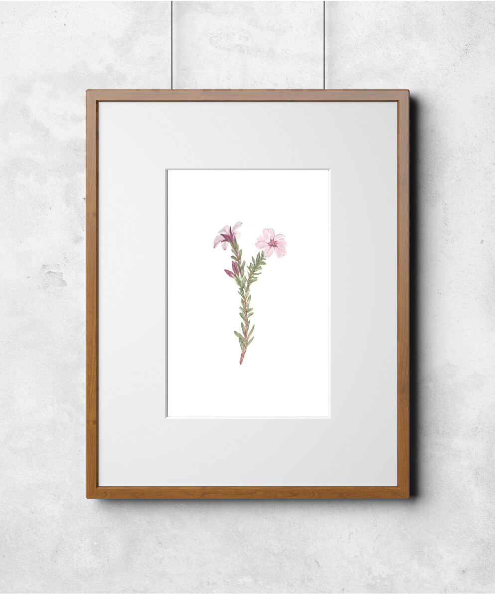 Fleur I Art Print