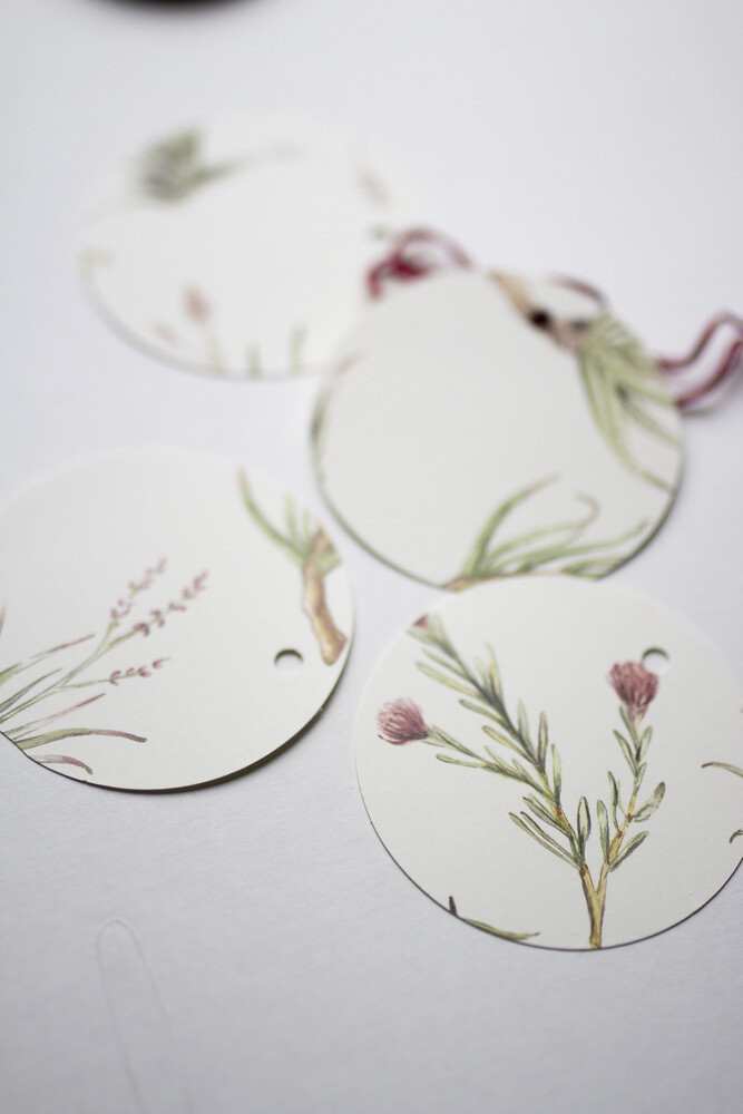 Protea Gift Tags Set of 4