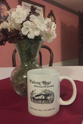 Falcon Rest Coffee Mug