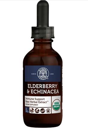 Global Healing Centre Elderberry and Echinacea