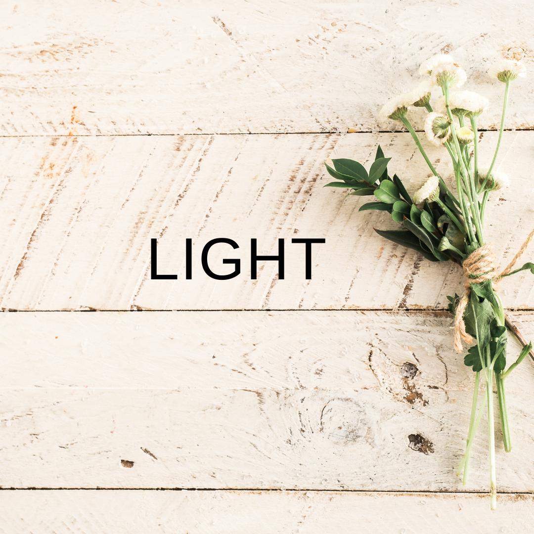 PLAN LIGHT