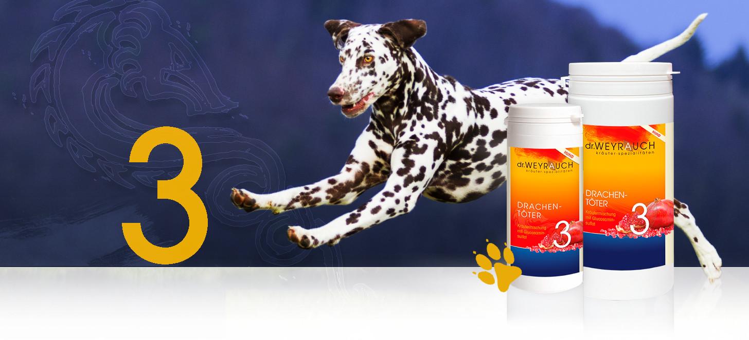 Dr.Weyrauch Drachentöter Nr. 3 Hund