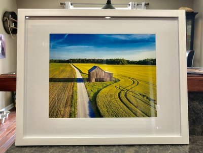 Beautiful Color Photograph Framed and Matted.