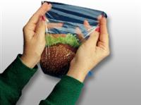 7 X 7 + 1 1/2 FB Low Density Flip Top Sandwich Bag 0.85 mil 1,000/cs