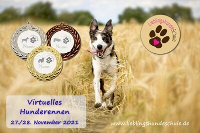 Hunderennen November 2021 - Online Hunderennen
